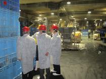 工場内で製造ラインを視察